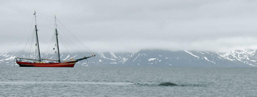 Spitsbergen met Noorderlicht Norge reiser