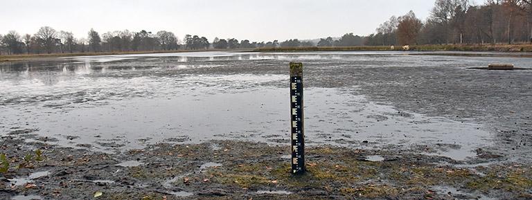 waterstand Leersumseveld